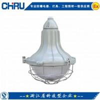 E250增安型防爆灯|吸顶灯|吊灯|壁灯|防爆吸顶灯